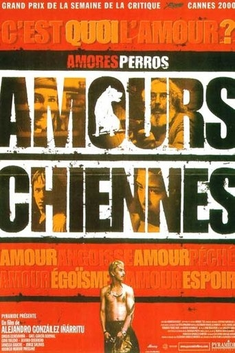 Amours chiennes download